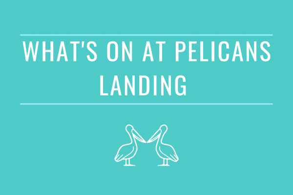 What's New at Pelicans Landing